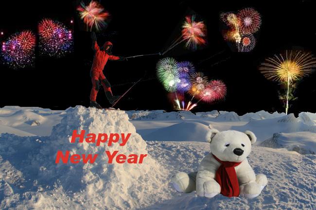 Noorwegen specialist actieve zomer en wintervakanties happy new year from the top of newtontoppen the highest mountain on spitsbergen i am standing on my igloo m4hsunfo